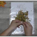 Осенний калейдоскоп поделка в детский сад